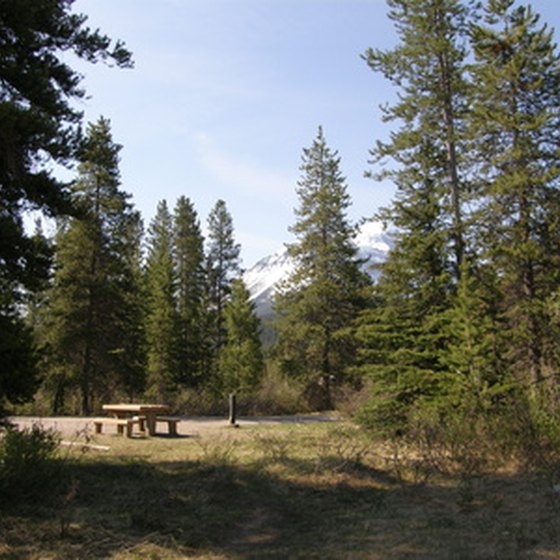 The community of Pinetop-Lakeside, Arizona, is located in the White Mountain Region.