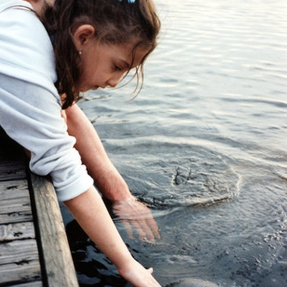 Children reach out to touch a manatee.