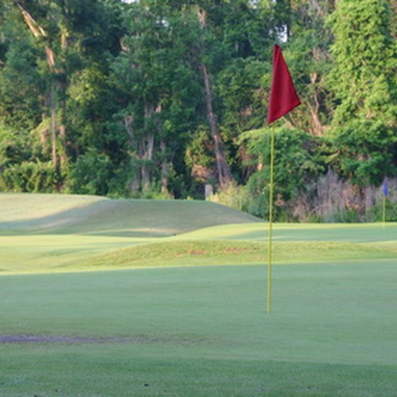 Charleston features two public golf courses.