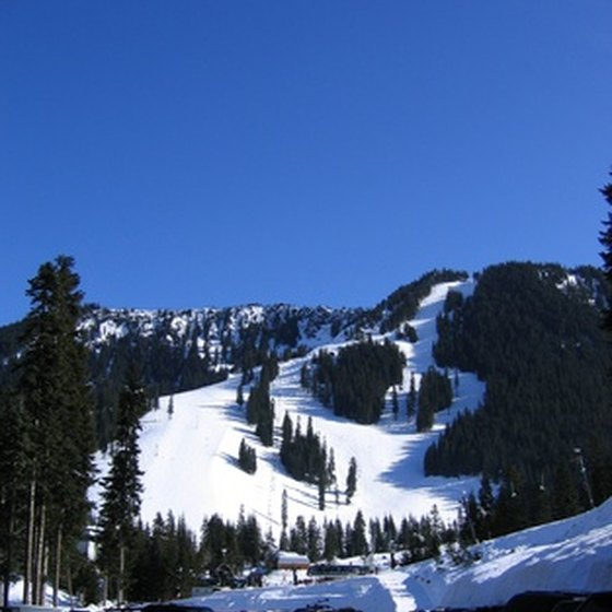 The ski slopes include multiple cross-country trails.