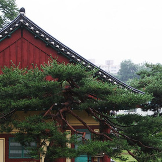 Explore the pagodas and temples of South Korea.