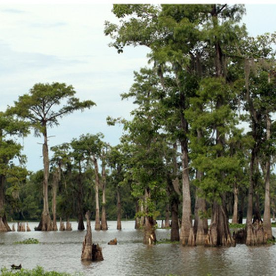 Valparaiso is within Florida bayou country.