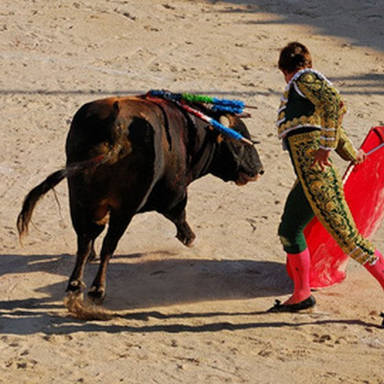 Bullfight in northern Spain