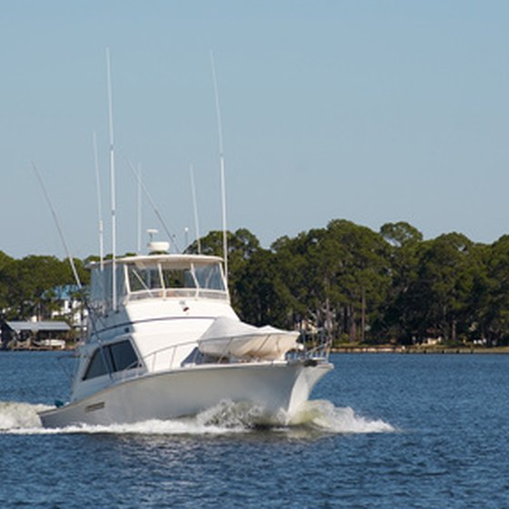 Fish with a charter boat to explore the waters of Crystal River.