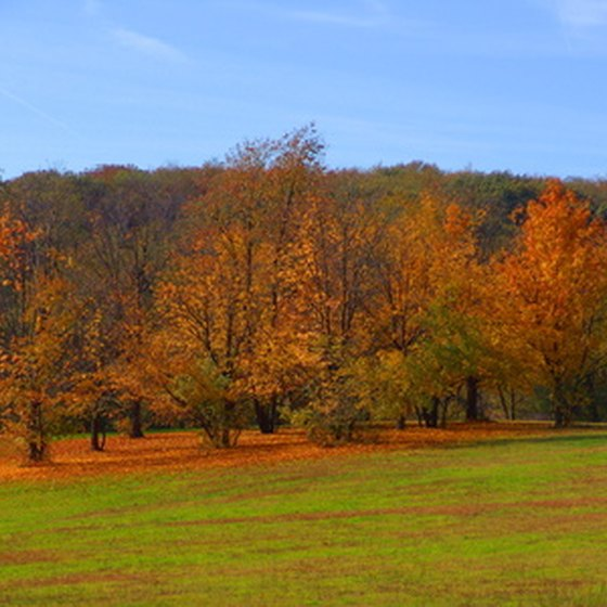 The Poconos are a canvas of colors during the autumn season.
