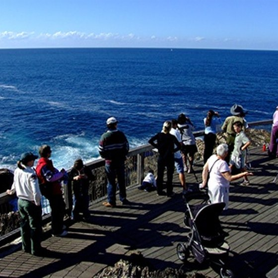 Whale-watching tours are popular among visitors to Boothbay Harbor, Maine.