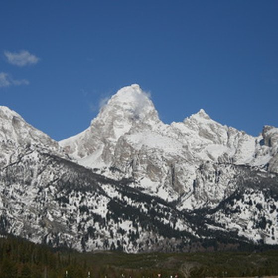 Grand Teton National Park is as much a haven for birdwatchers as for mountain climbers.