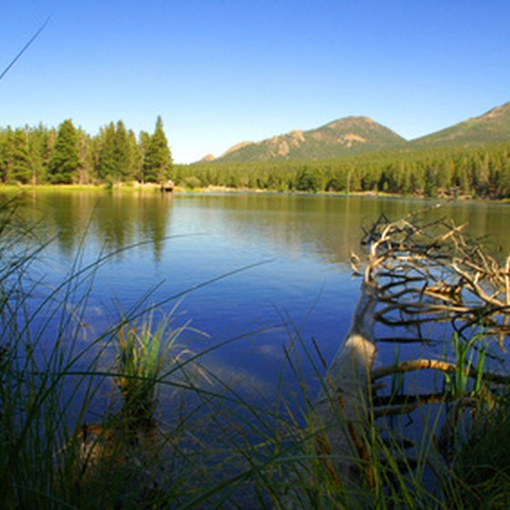 It's likely lakes and streams in Rocky Mountain National Park were originally absent of fish.