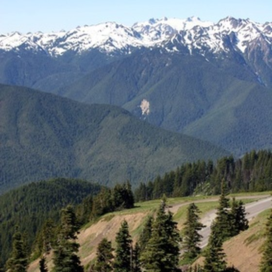 Motor home parks in Washington offer scenic views of nearby mountain ranges.
