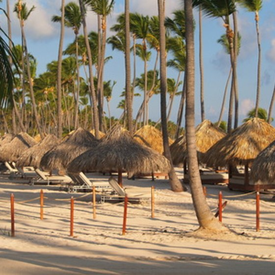 Typical Punta Cana resort beach features palapas for shade.