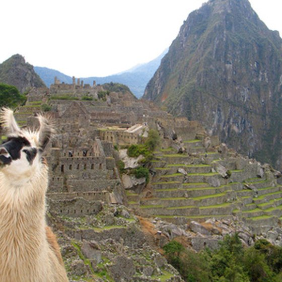 Machu Picchu sits high in the Andes.