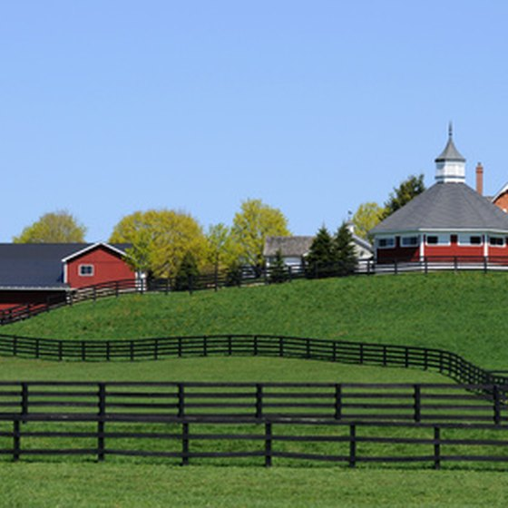 Tours of Horse Farms in Central Kentucky | USA Today