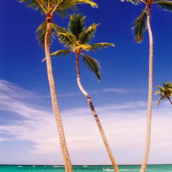 Providenciales is a popular destination for scuba divers.