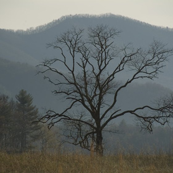 The Smoky Mountains straddle the Tennessee-North Carolina border.