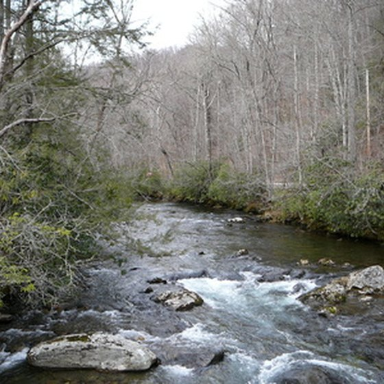 The Smoky Mountains offer spectacular scenery and fun events for the entire family.