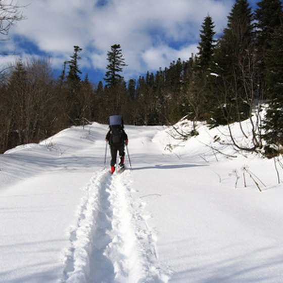 Cross-country skiing is just one of the many outdoor activities in Michigan.