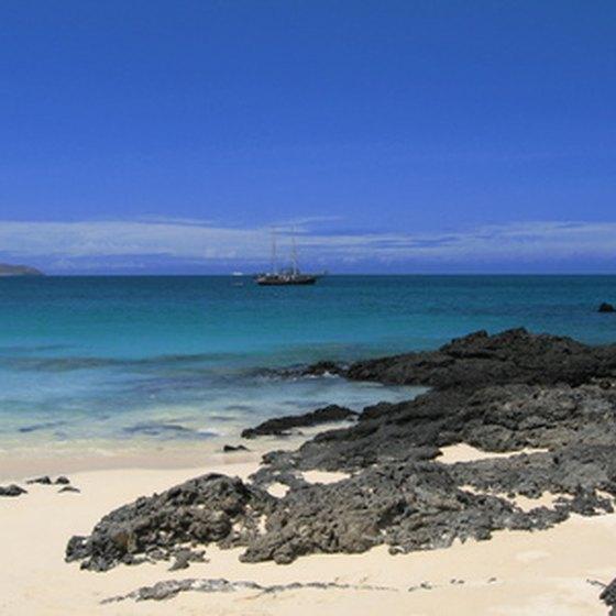 Easter Island & Galapagos Islands Tours