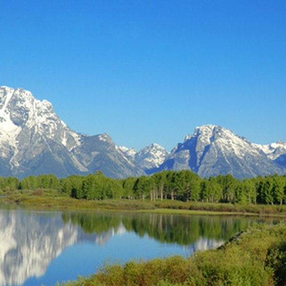 The Tetons rise like jagged teeth above a lush landscape.
