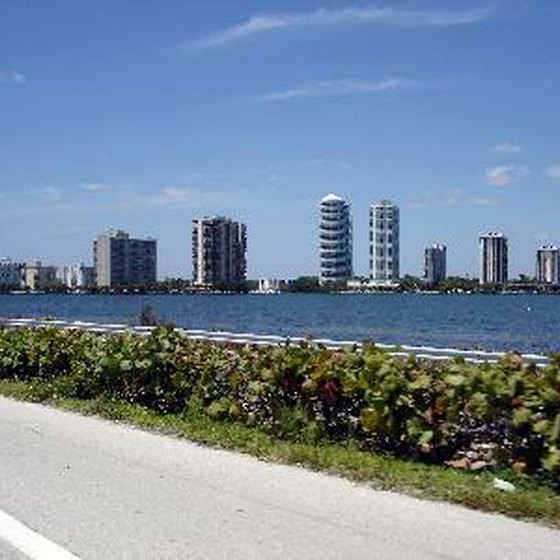 Rent a car in Miami.