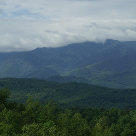 Many rental cabins near Gatlinburg often scenic views of the Smoky Mountains National Park.