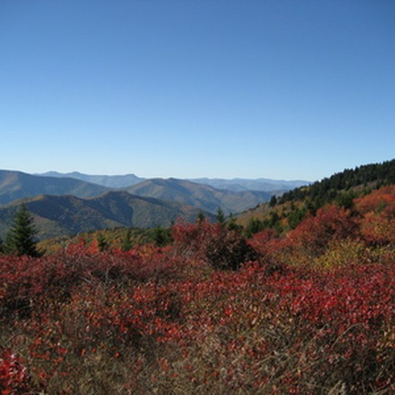Stay in a vacation cabin on a fall vacation to the North Carolina mountains.