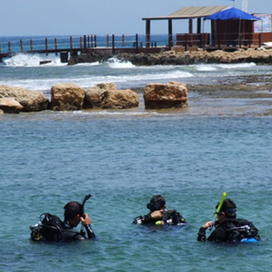 Divers training on a confined water training dive.