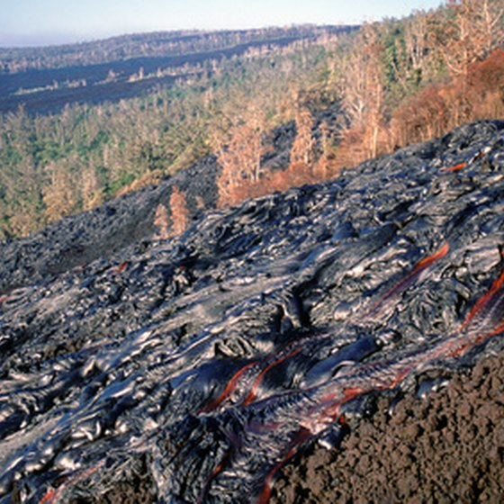 A lava flow consumes vegetation on Hawaii's Big Island.