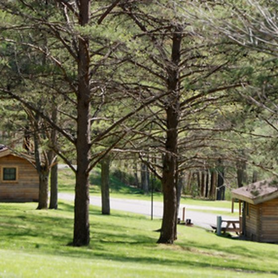 Cabins are set among the pines.