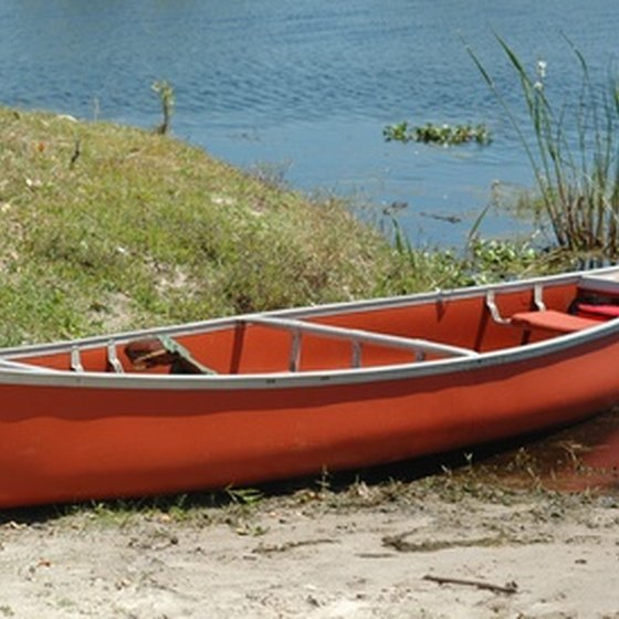 Canoeing in the Orlando area offers the chance to see a variety of wildlife.