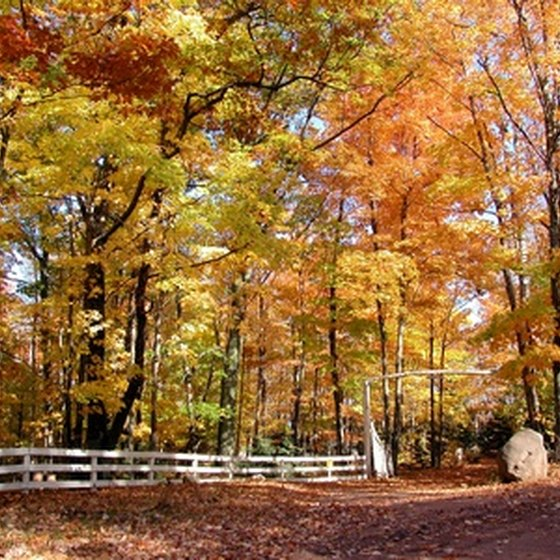 The fall colors in Michigan draw many to the U.P. in September and October.