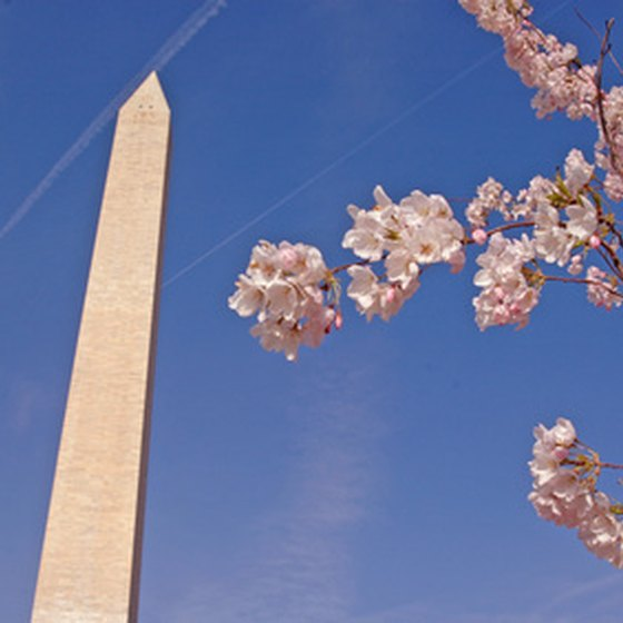 Washington D.C. is a family-friendly destination with tons of things for kids to do.