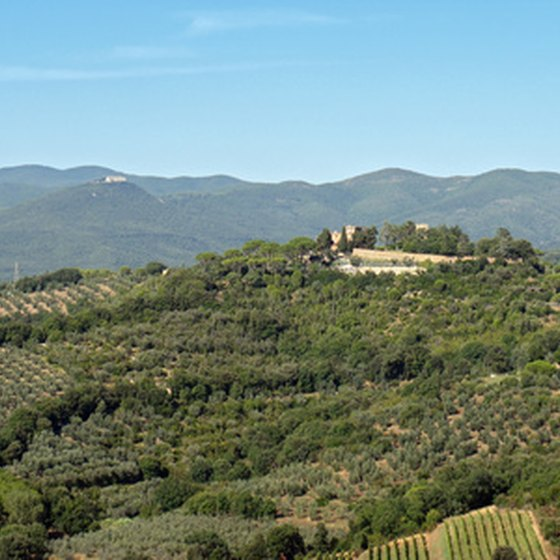 Tuscany is famous for traditional wines and contemporary blends.