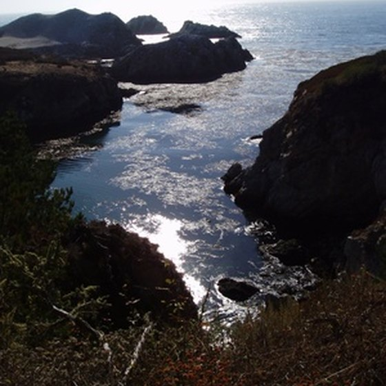Rock formations and ocean views are a few of the reasons Point Lobos has become well-known.