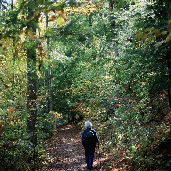 Hiking is a popular activity in Ledges State Park.