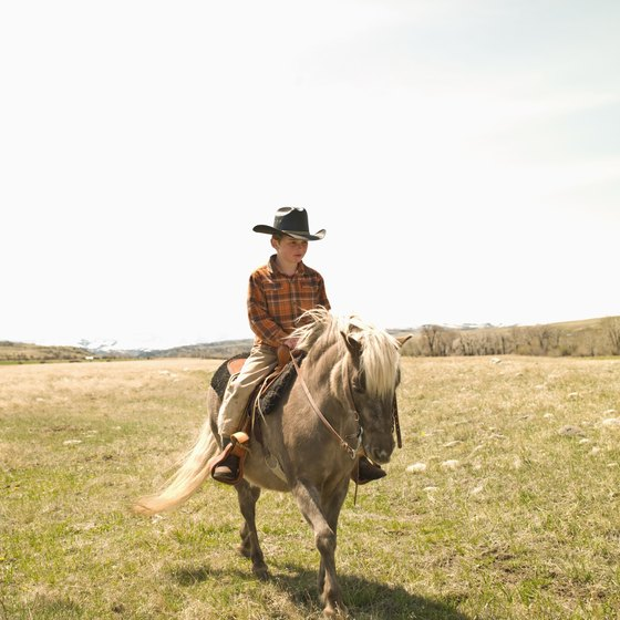 Unguided horseback riding facilities allow you to take your horse on a trail ride of your choosing.
