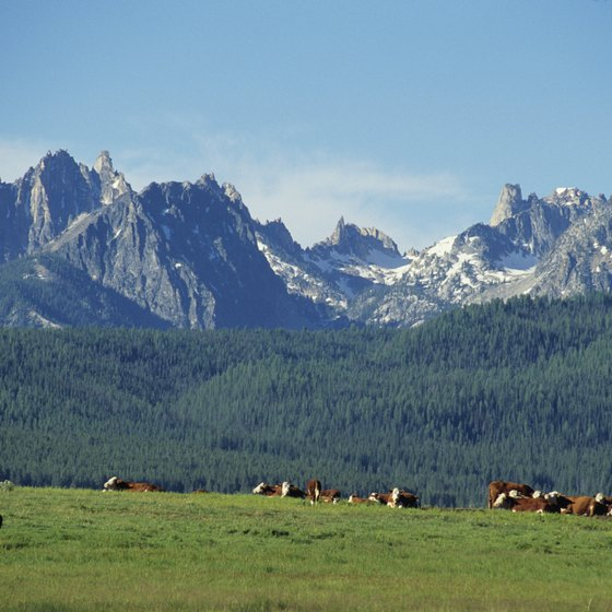 The Sawtooth Wilderness is northeast of Featherville.