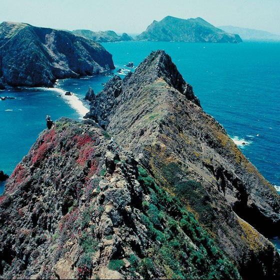 Channel Islands National Park lies off the southern coast of California.