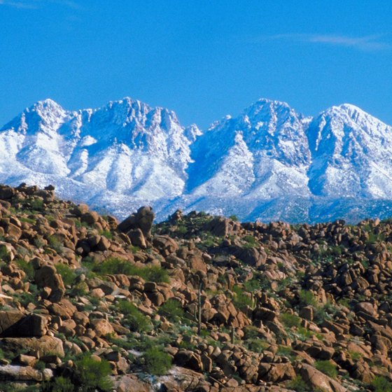 Explore offroad trails leading from warm desert to snowy peaks.