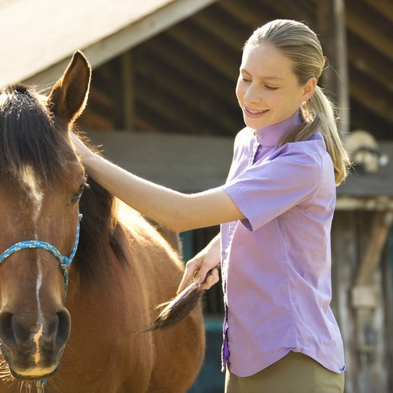 Learn grooming skills at a farm near Easton.