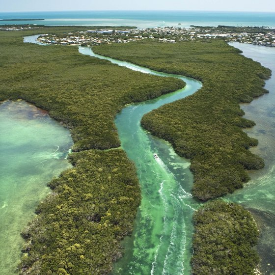 The Florida Keys are a productive spot for fishing and snorkeling.
