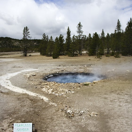 Geothermic features are just one of Yellowstone's many attractions.