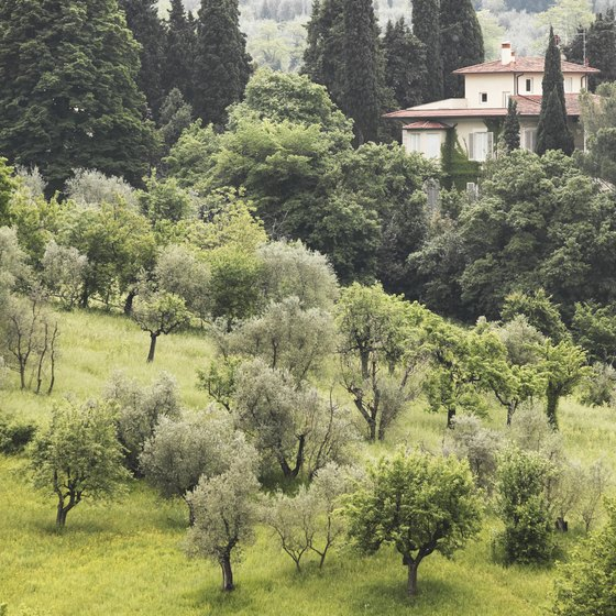 If a Tuscan villa is your dream, make sure it has been renovated recently or prepare to incur extra costs.