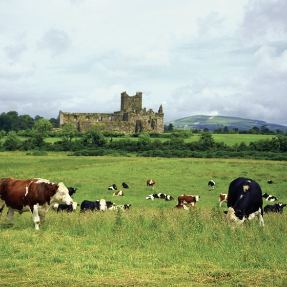 Dunbrody Castle offers bed-and-breakfast accommodation within its medieval walls.