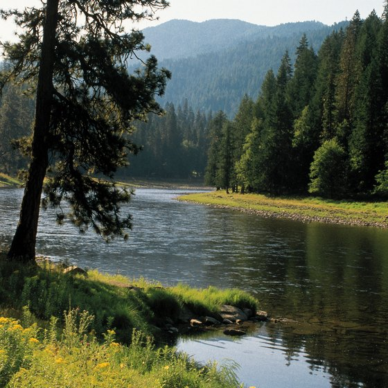Idaho boasts many tranquil creeks and lakes for fishing.
