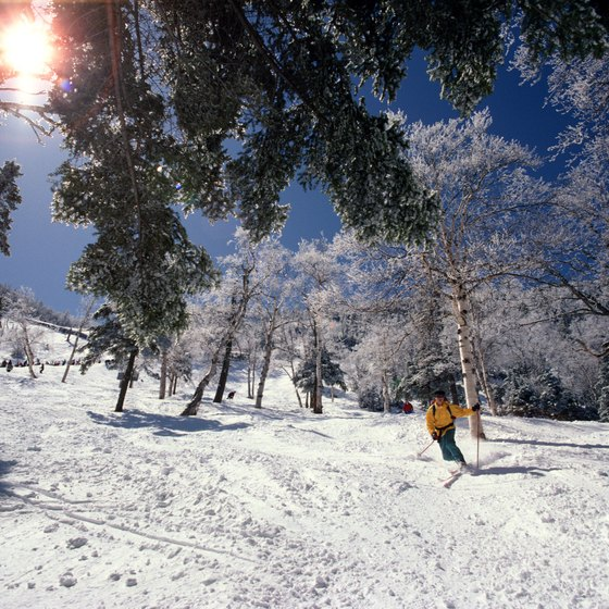 Vermont offers downhill, telemark and Nordic skiing.