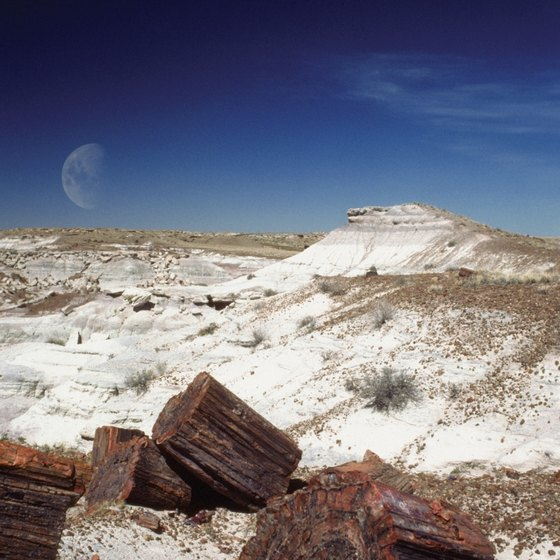 Holbrook is a short distance to the Petrified Forest National Park in Arizona.
