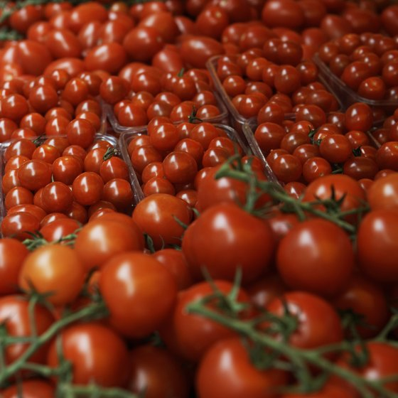 To meet demands for local produce, Texas farmers are looking to greenhouses to grow fresh, juicy tomatoes.