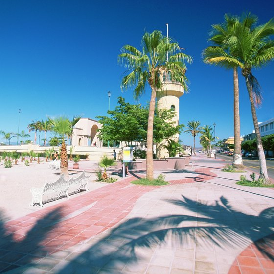 La Paz's beachfront promenade runs alongside the Malecon road.