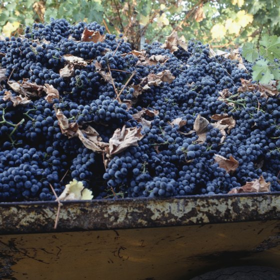 Wine is the main draw of St. Helena, but visitors can indulge in much more.