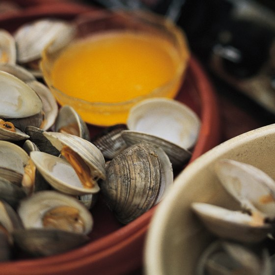 You can harvest clams from Washington's beaches.